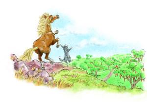 8-Ankunft im Karottenbaumland