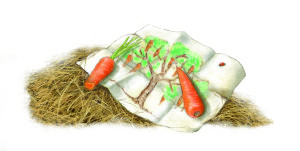 6-Traumzeichnung Karottenbaum